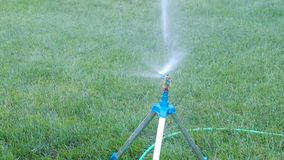 Sprinkler system working on fresh green grass. Aut Stock Photo