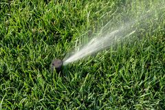 Sprinkler system working on fresh green grass. Automatic sprinklers watering grass Stock Photo