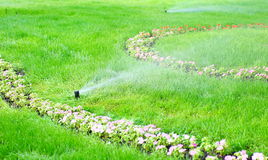 Sprinkler water on the grass Stock Image