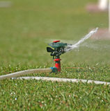 Sprinkler watering Stock Images