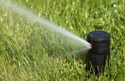 Sprinkler watering Royalty Free Stock Image