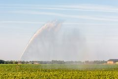 A sprinkler is watering farmland in the Netherlands stock photo