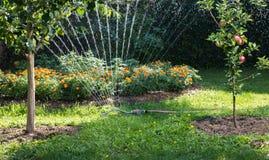 Sprinkler Stock Images