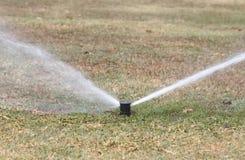 Sprinkler watering in golf course Stock Photos