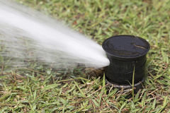 Sprinkler watering in golf course Royalty Free Stock Photography