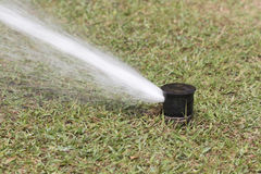 Sprinkler watering in golf course Royalty Free Stock Images