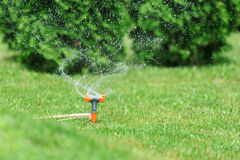 Free Sprinkler Watering Grass Stock Photo - 55785980