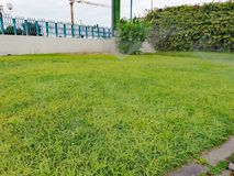 Sprinkler Watering on green grass. On field in cloudy weather royalty free stock photography