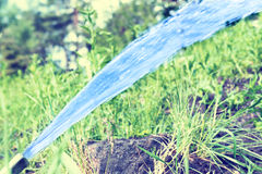 Sprinkler watering the green lawn Royalty Free Stock Photos