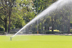 Sprinkler in Watering green lawn of golf courses. Royalty Free Stock Photo