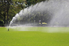 Sprinkler in Watering green lawn of golf courses. Royalty Free Stock Image