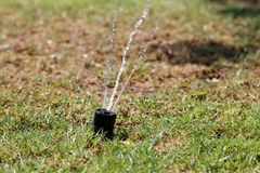 Sprinkler and watering the lawn royalty free stock images