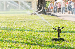 Sprinkler is watering the lawn Royalty Free Stock Image