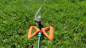 Sprinkler watering lawn stock video