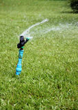 Sprinkler is working. Royalty Free Stock Images