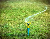 Sprinkler working Royalty Free Stock Image
