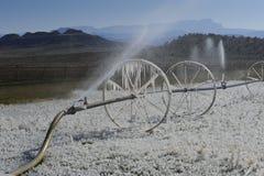 Sprinklers Royalty Free Stock Photos
