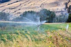 Sprinklers 21. Sprinklers founain on the farm field Stock Image