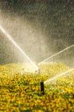 sprinklers Royaltyfri Foto