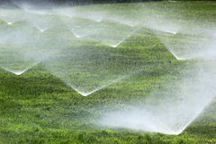 Sprinklers on a green lawn royalty free stock photography