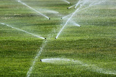 Sprinklers on a green lawn Stock Images