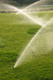 Sprinklers. Lawn irrigation sprinklers. Sprinkling a grass Stock Photography