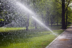 Sprinklers in park Royalty Free Stock Photo