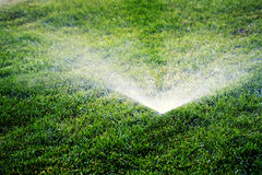 Sprinklers Spraying Water on Lawn Grass Royalty Free Stock Image