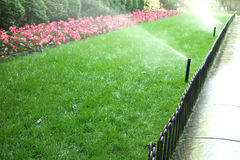 Sprinklers. Watering grass and flowers Stock Image