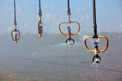 sprinklersvatten royaltyfri foto