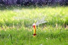 sprinklervatten Fotografering för Bildbyråer