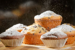 Sprinkling caster sugar on some muffins. On black background stock images