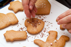 Sprinkling gingerbread. A chef sprinkling decorations on gingerbread cookies Royalty Free Stock Photography