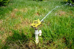 Sprinkling irrigation Stock Images