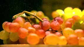 Sprinkling water over multicolor grape bunch. Super slow motion video stock video footage