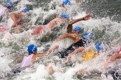 Sprintar den europeiska triathlonen för Cremona ITU koppen Royaltyfria Foton