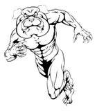 Sprinting bulldog mascot. Running bulldog mascot illustration of a bulldog animal sports mascot or character sprinting Royalty Free Stock Photo
