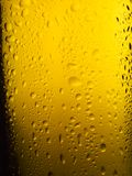Spritzed Beer Bottle. Glass beer bottle, back-lit and spritzed with water Stock Photography