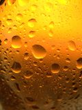 Spritzed Beer Bottle. Glass beer bottle, back-lit and spritzed with water Royalty Free Stock Image