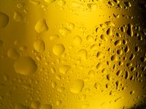 Spritzed Beer Bottle. Glass beer bottle, back-lit and spritzed with water Royalty Free Stock Photography