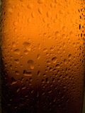 Spritzed Beer Bottle Royalty Free Stock Image