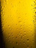Spritzed Bierflasche Stockfotografie