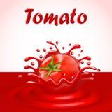 Spritzen des Safts eines Tomatengemüses lizenzfreie abbildung