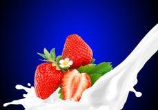 Spritzen von Milch mit Erdbeere Stockbild