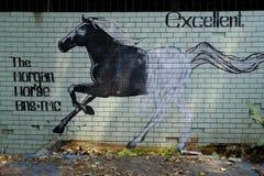 Ausgezeichnetes Pferd stockfoto