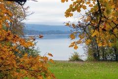 Sproat prowincjonału Jeziorny park podczas spadku w Vancouver wyspie zdjęcia royalty free