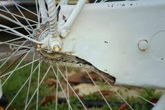Sprocket of bikes parked at the park. Sprocket of bikes parked at the park Royalty Free Stock Photo