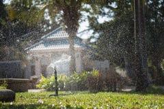 Sproeier die de installaties water geven Stock Afbeeldingen