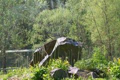 Sproeier op grote rots het water geven bloemen Stock Foto's