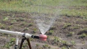 Sproeier voor irrigatie Het water geven van de tuin, toebehoren voor het water geven stock footage
